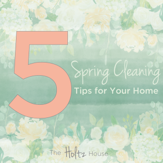 5springcleaningtips